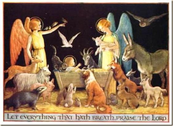 animales ateismo