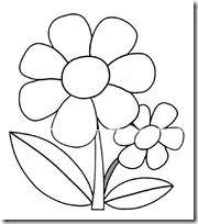 primavera-margarita