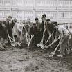 Prve radne akcije 1962.jpg
