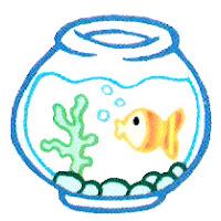 aquário colorido2.jpg