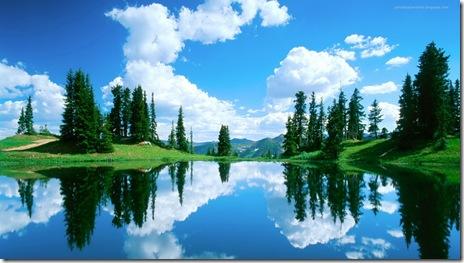 wallpapers2-peisaje natura