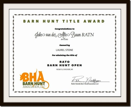 Barn Hunt Open Certificate