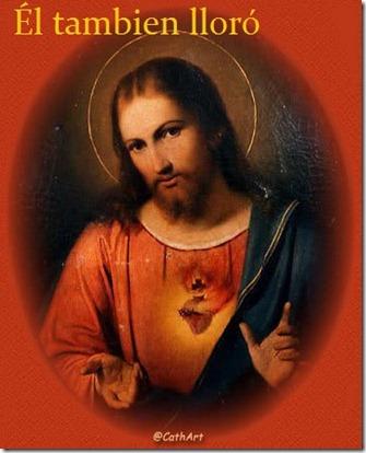Jesus2012-14