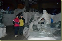 Ice Two explorers