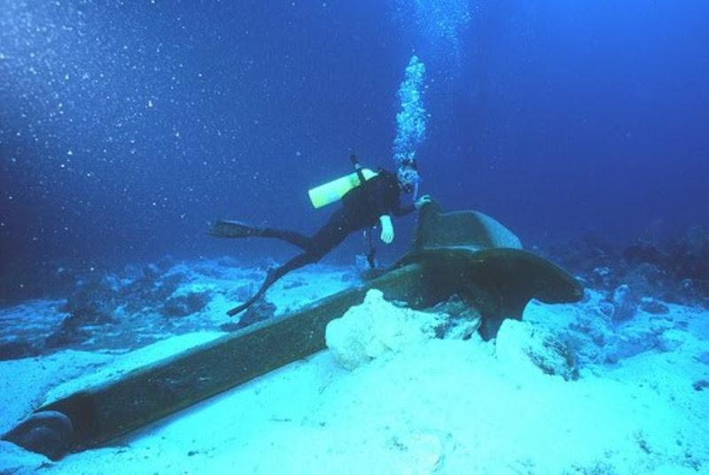 Internet Undersea World