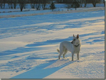 First Snow 019