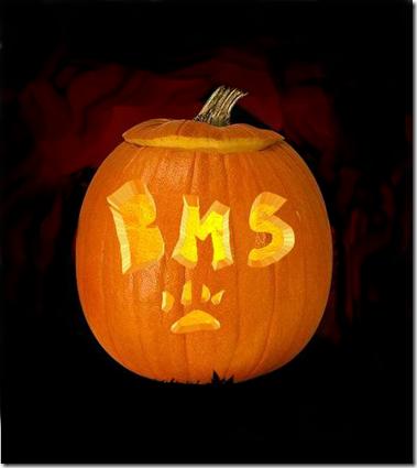 BMS Pumpkin2