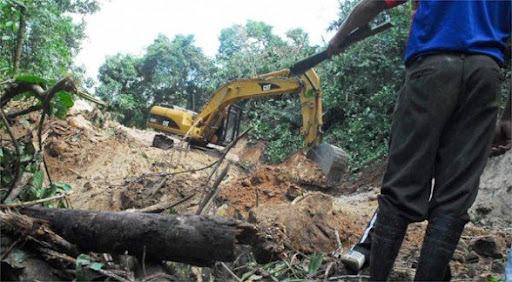 The digger destruction to build the illegal road.
