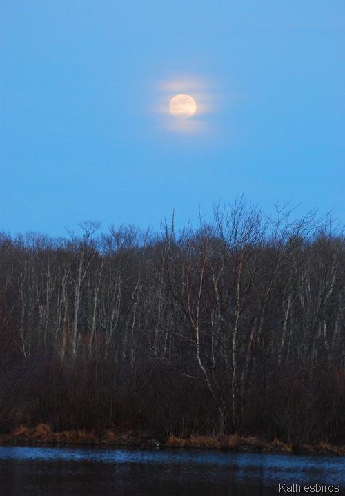 5. Moonrise546-kab
