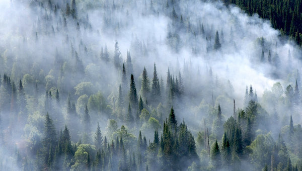 Aerial view of smoke billowing over forest in Siberia, 3 August 2012. Alexandr Kryazhev / RIA Novosti