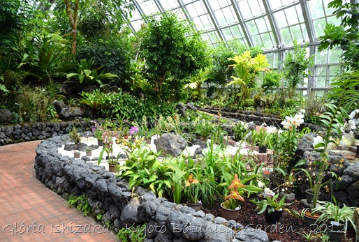 Glória Ishizaka -   Kyoto Botanical Garden 2012 - 28