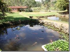 Pesq. Pantanal