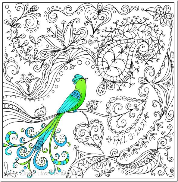 Bird of Paradise for blog