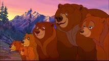 23 le clan des ours