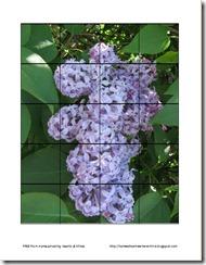 hyacinth preschool puzzle thumbnail