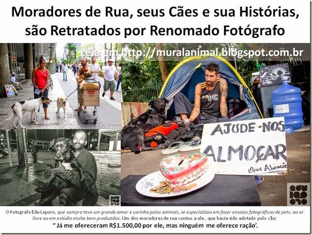 Moradores de Rua, seus Cães e sua