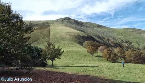 Monte Adi