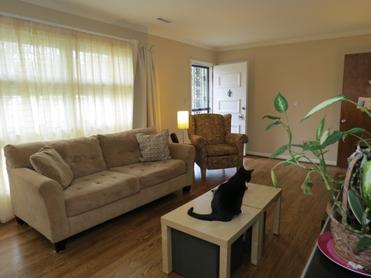 Livingroom and front window