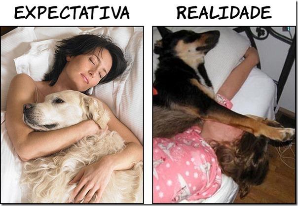 Dormindo com seu animalzinho