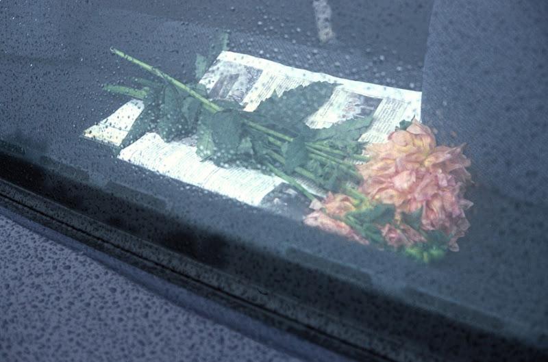 552 flores para una despedida