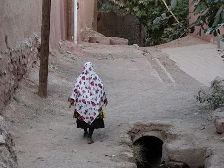 20, Taranca din Iran.JPG