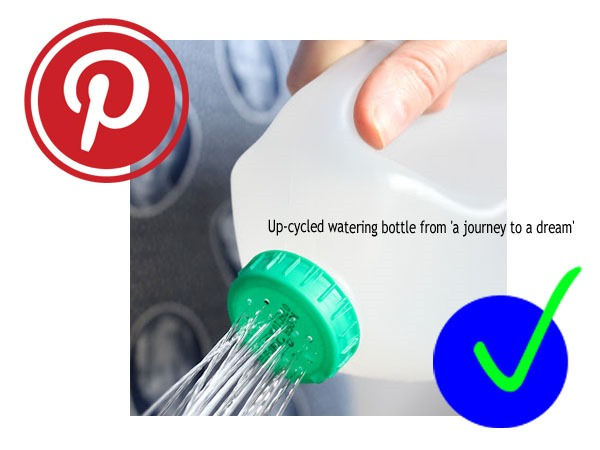 virtù - pinterest watering bottle from journey to a dream- a yay!