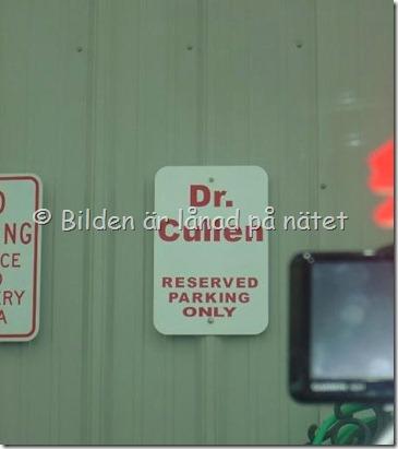 P-plats för Dr Cullen