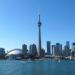 skyline of Toronto in Toronto, Ontario, Canada