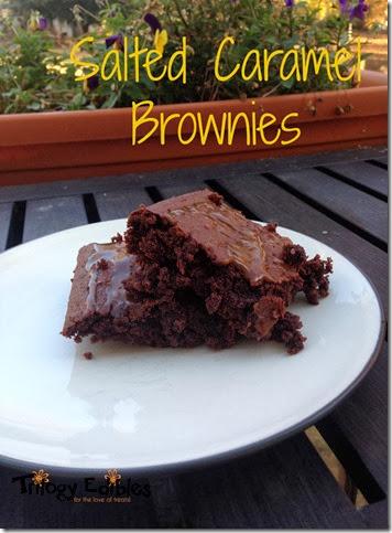 brownie1b