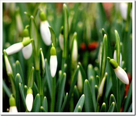 14 Feb 5 14-02-2012 15-43-41.ORF