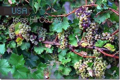 melhores-destinos-vinho-e-delicias-eua-texas