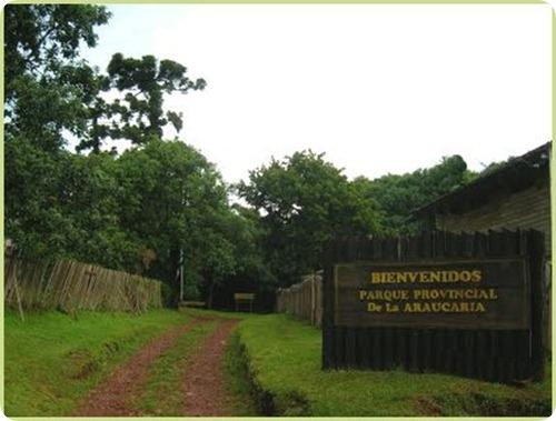 Parque Provincial Araucaria en San Pedro1