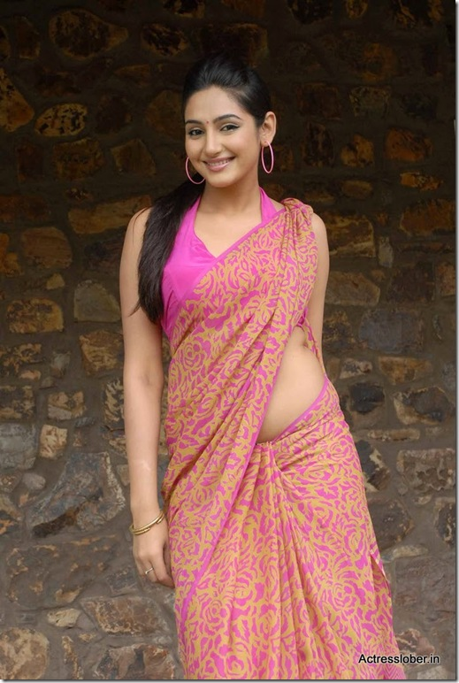 Ragini  Dwivedi Hot Saree South Actress (5)