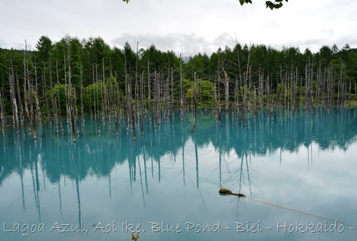 Lagoa Azul - Biei - Hokkaido - Glória Ishizaka - 6