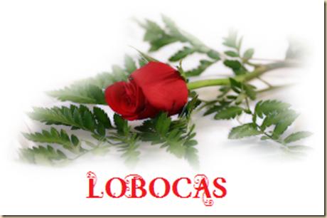rosa-LoBocAs-5005
