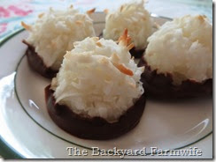 coconut chocolate macaroons - The Backyard Farmwife