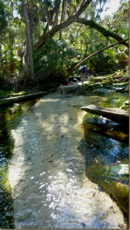 Chassahowitza River canoeing_062