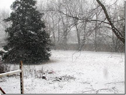 snow02-04-14a