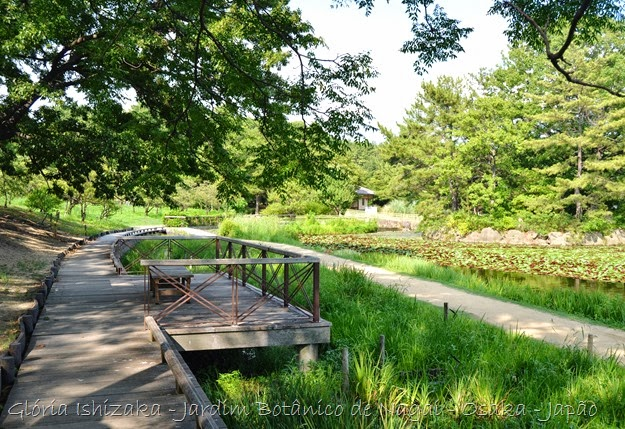 Glória Ishizaka - Jardim Botânico Nagai - Osaka 23