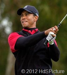 Tiger Woods, dia masih memerlukan seorang pelatih untuk mereview keberhasilannya