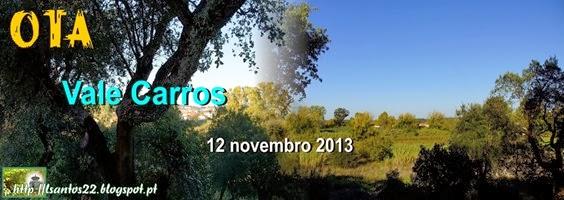 OTA - Vale Carros - 12.11.13
