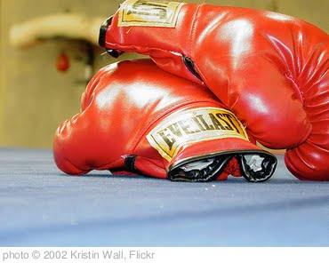 'Boxing Gloves' photo (c) 2002, Kristin Wall - license: http://creativecommons.org/licenses/by-nd/2.0/