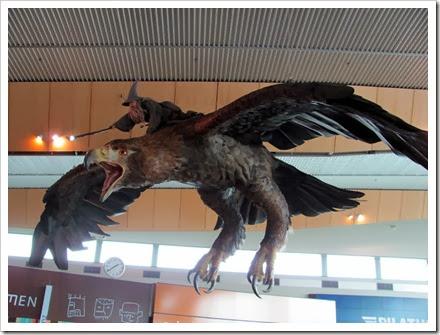 Gandolf in flight.