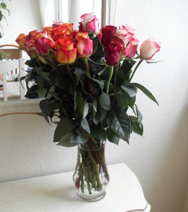 De skønneste roser