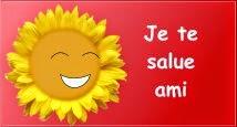 salut ami3