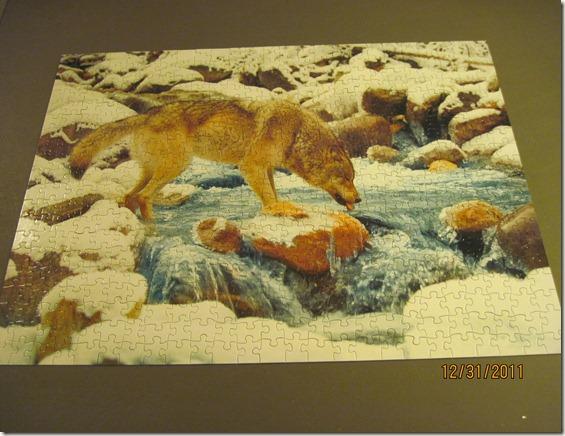 last puzzles 2011 002