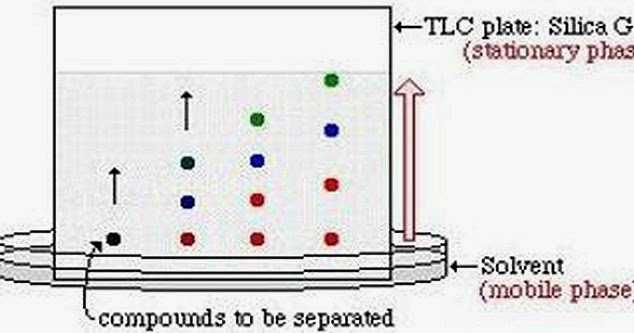 paper chromatography terms The possibility of paper‐chromatographic identification of mixtures of polycyclic  aromatic hydrocarbons has been studied in order to decrease the hydrophilic.