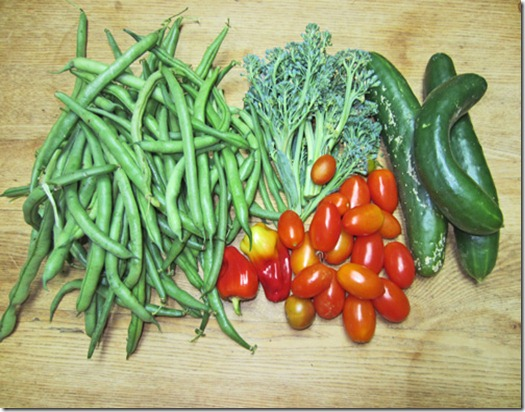 Bush beans, Juliet tomatoes and Summer Dance cucumbers