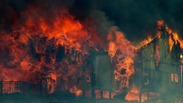 A wool shed goes up in flames near the Carlton River in Tasmania, where up to 80 buildings were destroyed, 5 January 2013. Photo: Richard Jupe / The Australian