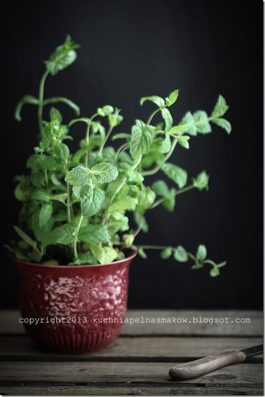 mint tea, herbata miętowa (8)
